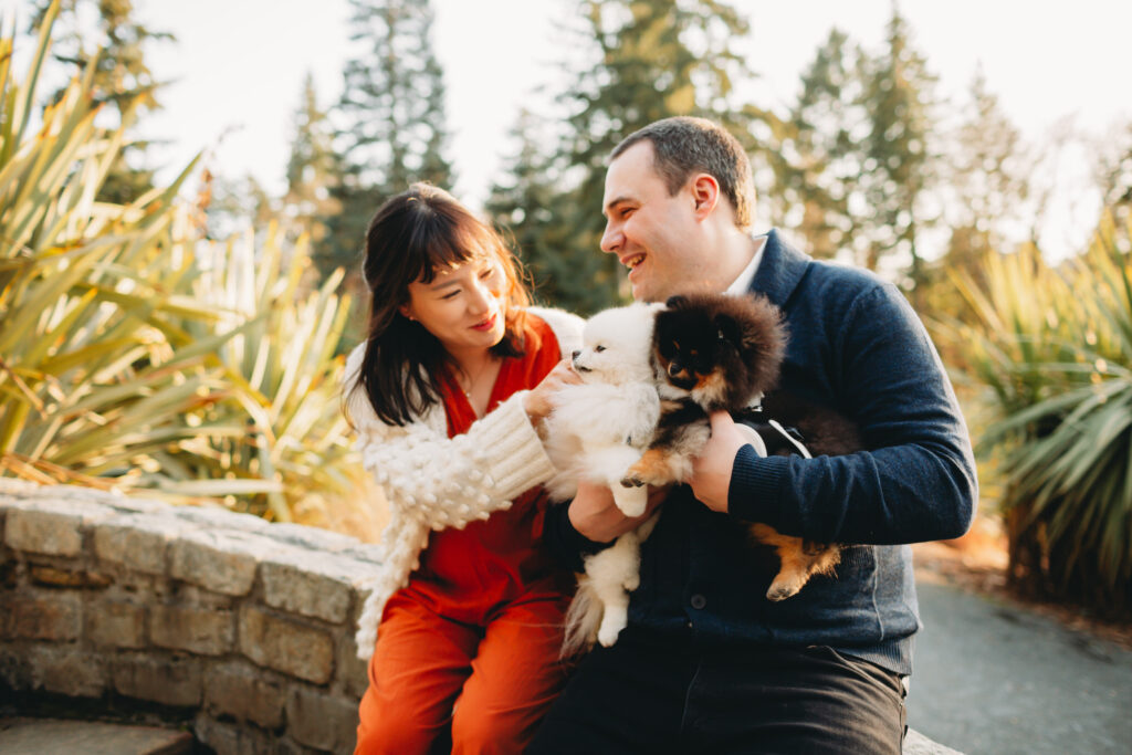 maternity session seattle with dogs