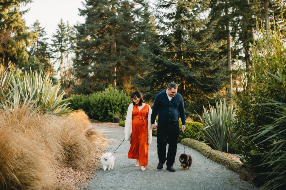 Seattle Sunset Maternity Session with Dogs!